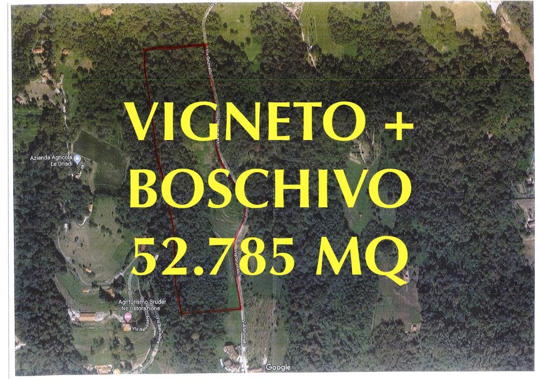Terreno Agricolo in vendita a Palazzago, 9999 locali, prezzo € 280.000 | CambioCasa.it