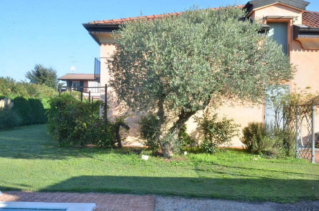 Elegante villa singola con ampio giardino e piscina - 9