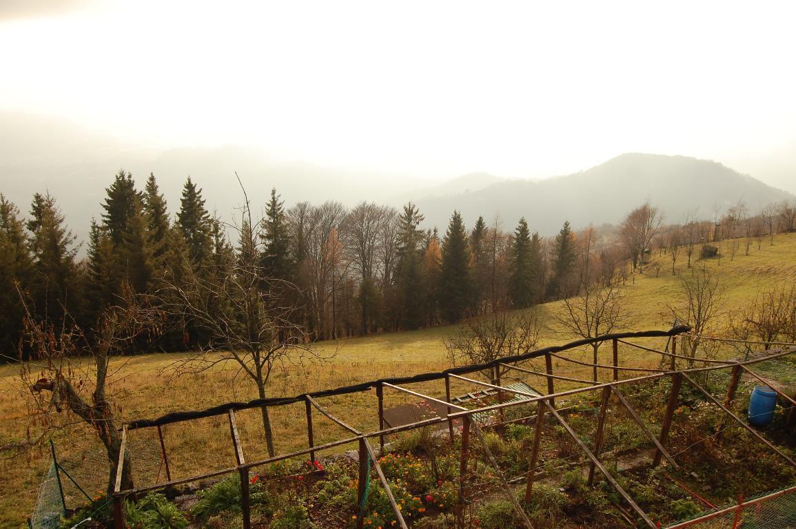 Terreno Agricolo in vendita a Torre de' Busi, 9999 locali, zona Zona: Valcava, prezzo € 85.000 | CambioCasa.it