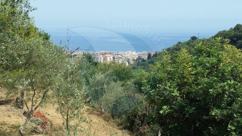 Alassio, prima collina, terreno con progetto approvato per villetta.
